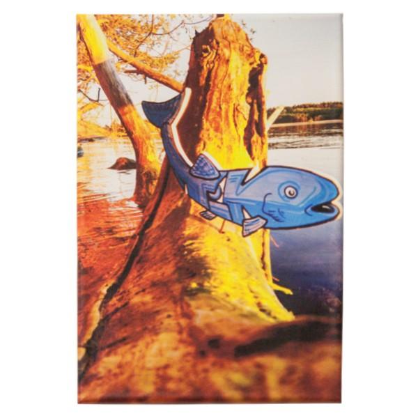 """Tik - Fisch (Original Fotoprint)"" 20x30cm"
